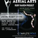 Kujo's Aerial and Pole Workshops