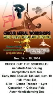 WCAAF-2014-Workshops